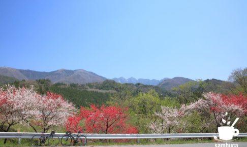 中山道ゆったりサイクリング