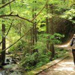 馬籠峠のハイキングコース