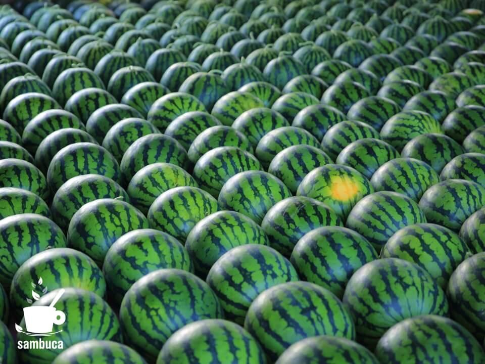 信州のスイカの直売所の風景