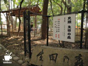 生田の森の入口