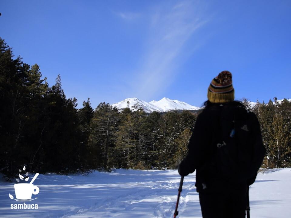 乗鞍高原・牛留池から乗鞍岳を望む