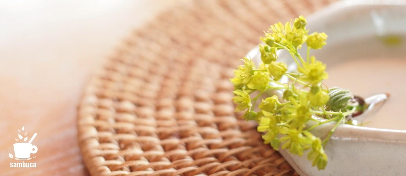 イタヤカエデの花