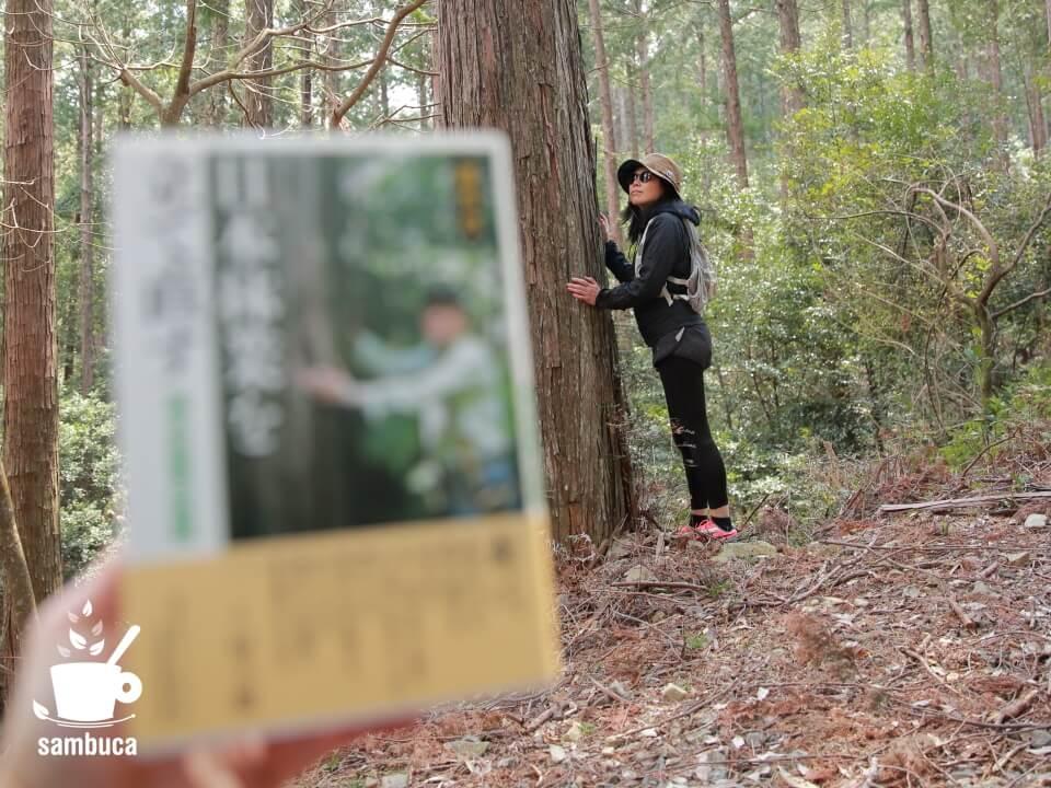 『日本林業を立て直す』の表紙と同じポーズで撮影