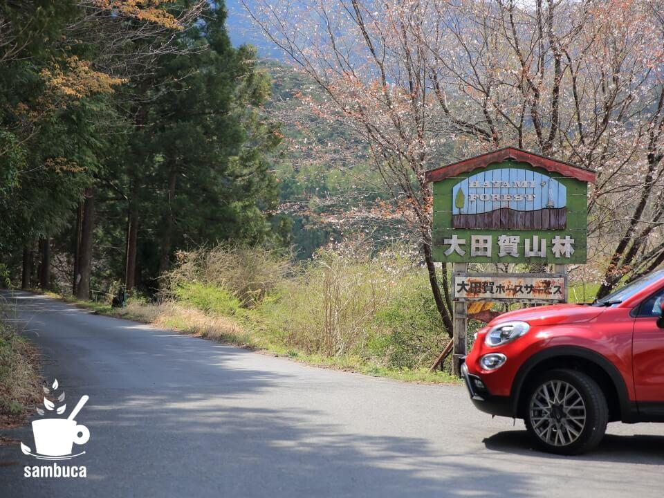 速水林業の森、大田賀山林にやってきました(愛車・FIAT500Xと共に)