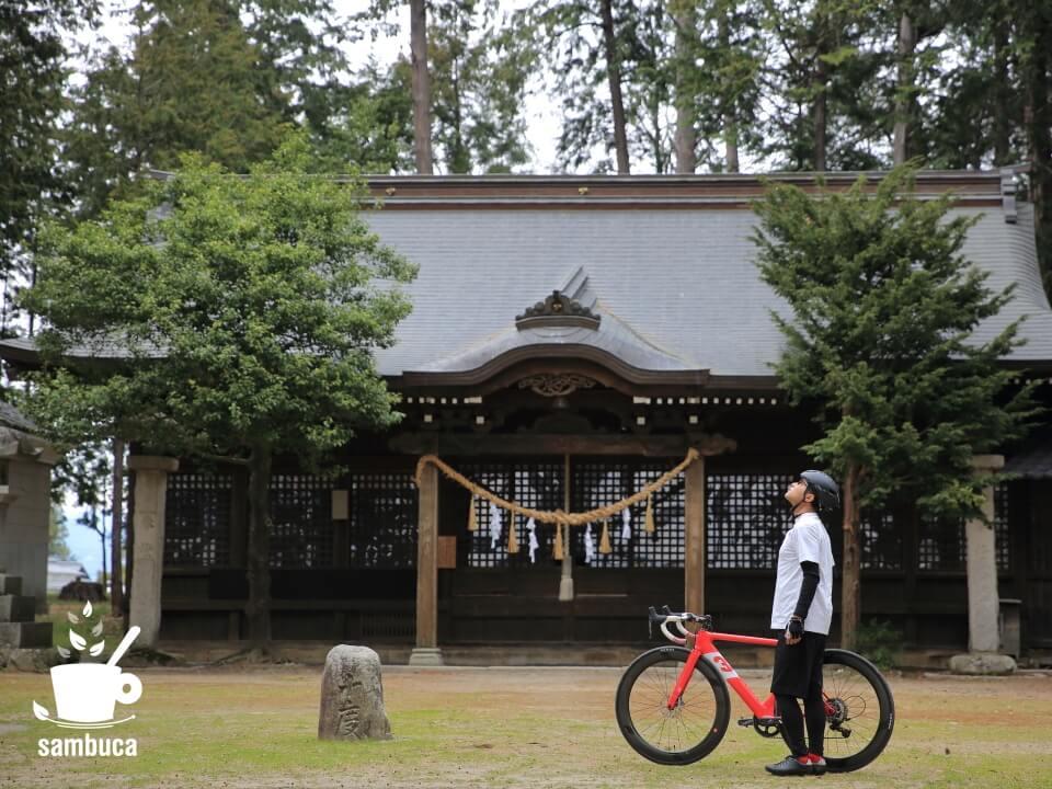 日吉神社の境内でヒノキの大木を眺めます(3Tバイクと共に)