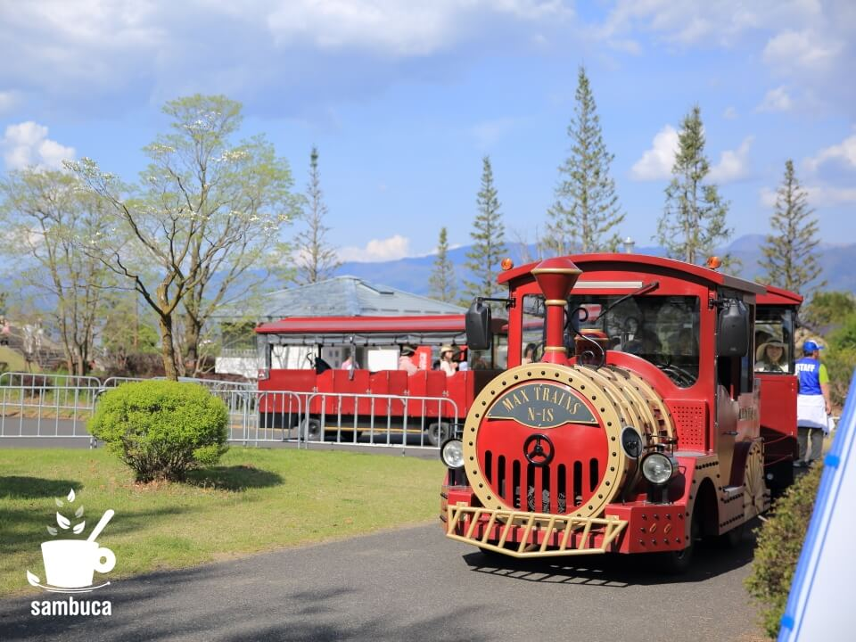 信州スカイパーク内の移動手段「ロードトレイン」