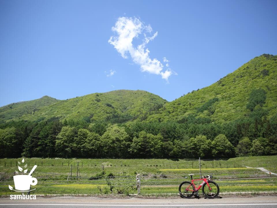 国道148号線を北上(3Tバイクの向こうには菜の花畑と新緑)