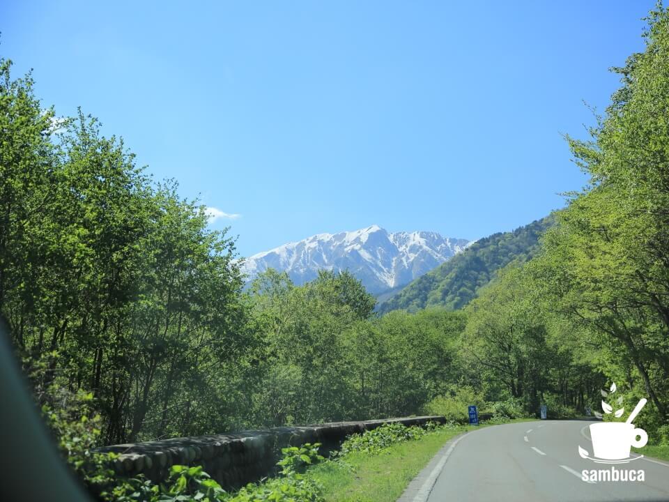 蓮華岳を眺めながら、大町アルペンラインを上ります