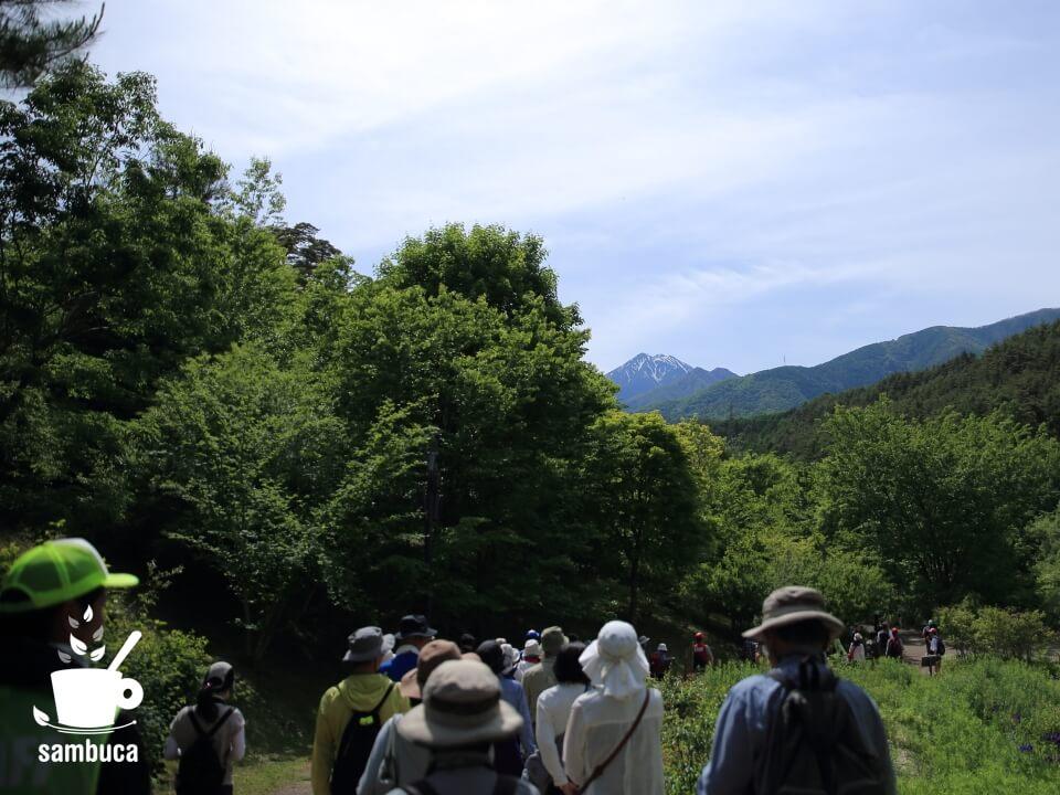 烏川渓谷緑地の散策