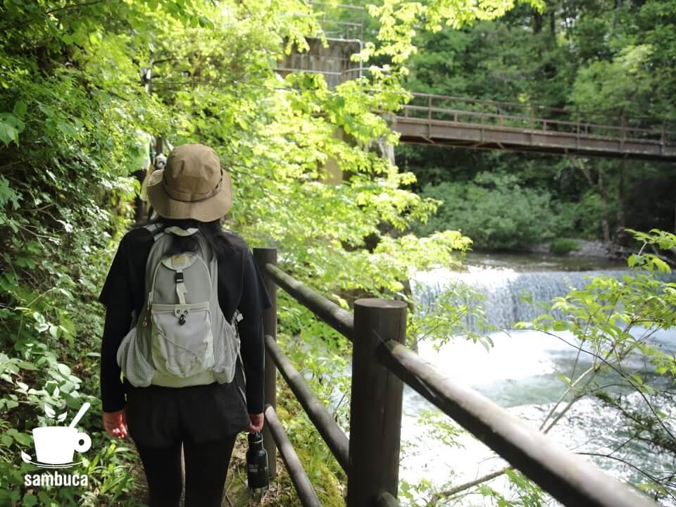 烏川沿いを上流に向かって歩きます