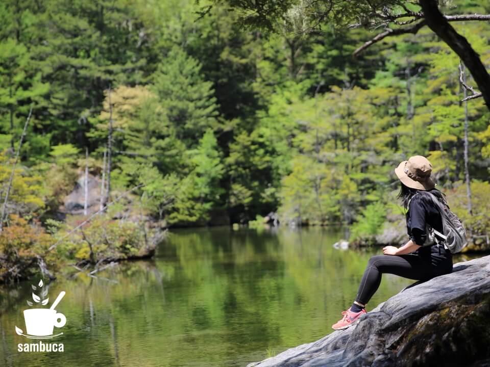 明神池で新緑と水面を眺める