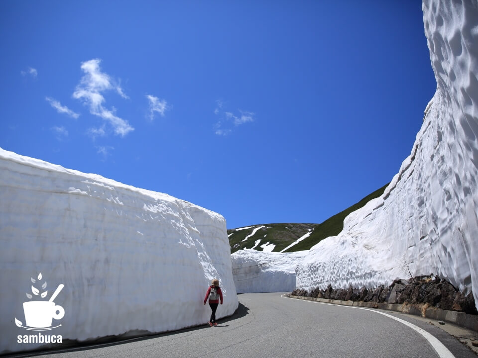 雪の回廊(乗鞍エコーライン)