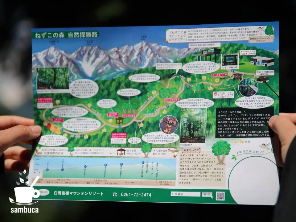 「ねずこの森 自然探勝路」マップ