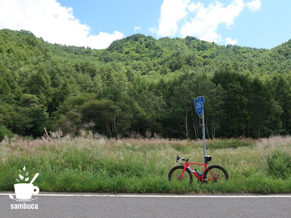 ススキの草原と3Tのロードバイク