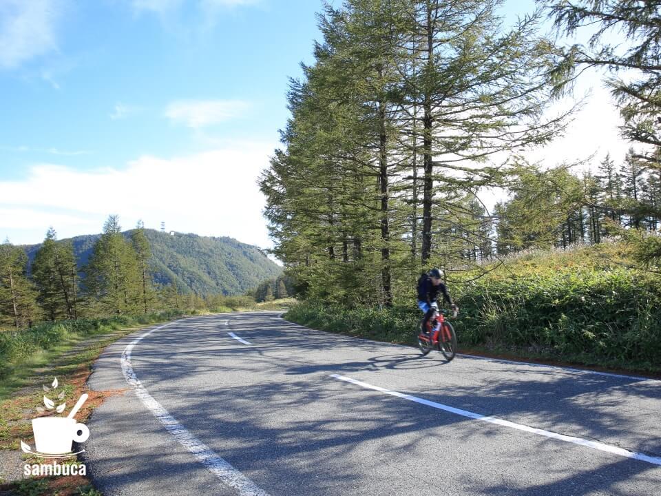 美ヶ原高原を3Tのロードバイクで