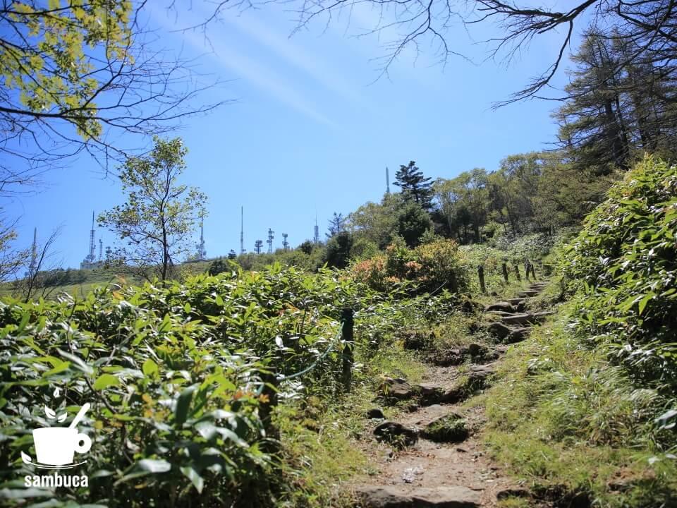 山頂へのハイキングコース