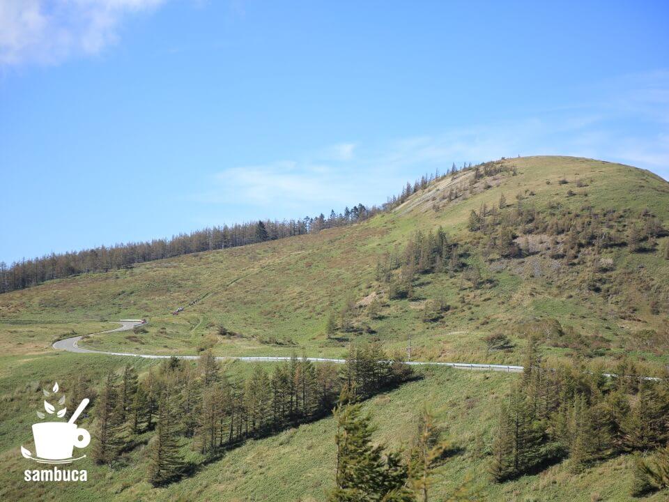 美ヶ原高原の自動車道