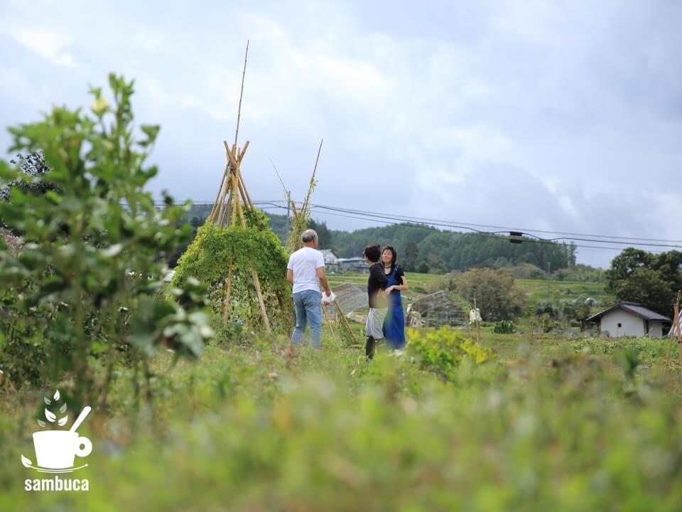 Satoyama villa DENの広大な畑