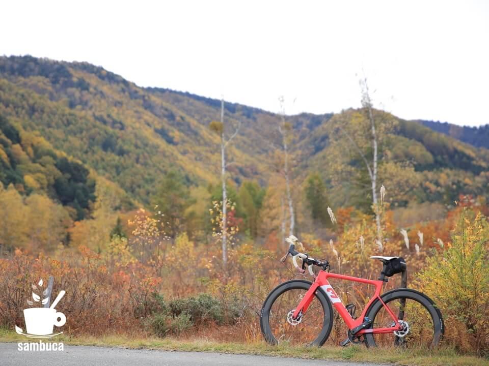 黄葉の風景と3Tのロードバイク