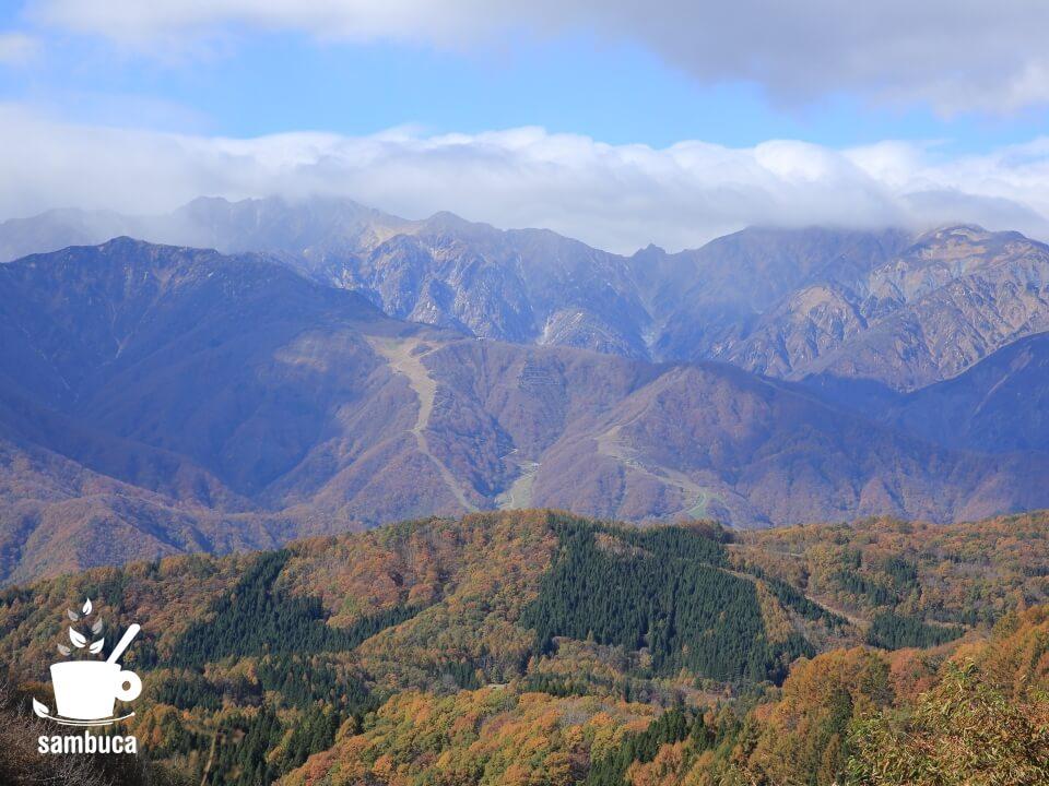 白沢峠から眺める後立山連峰