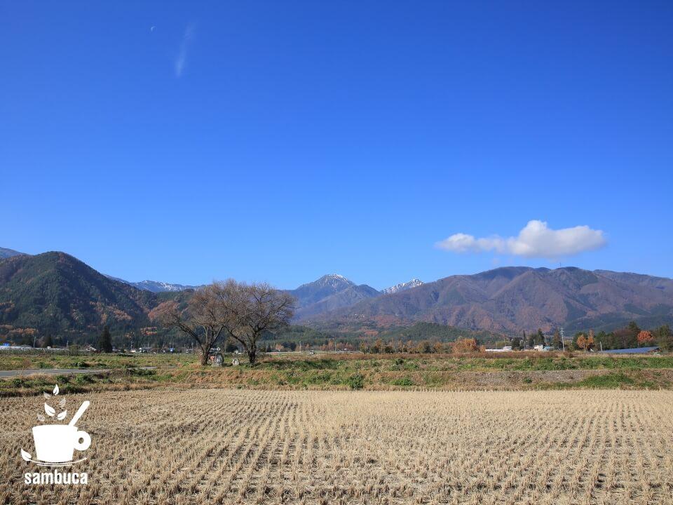 常念岳と2本の桜の木、常念道祖神