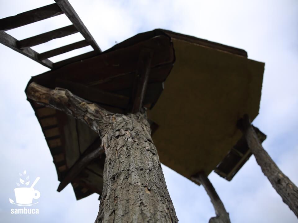高過庵の柱