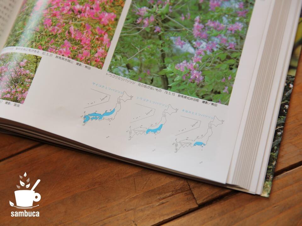 『山渓カラー名鑑 日本の樹木』のミツバツツジのページ