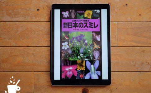 『ヤマケイハンディ図鑑6 増補改訂 日本のスミレ』