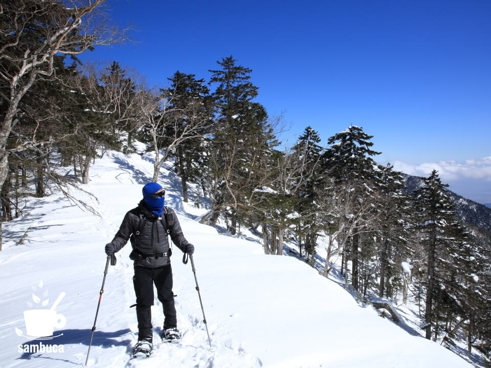 雪山で植物散策