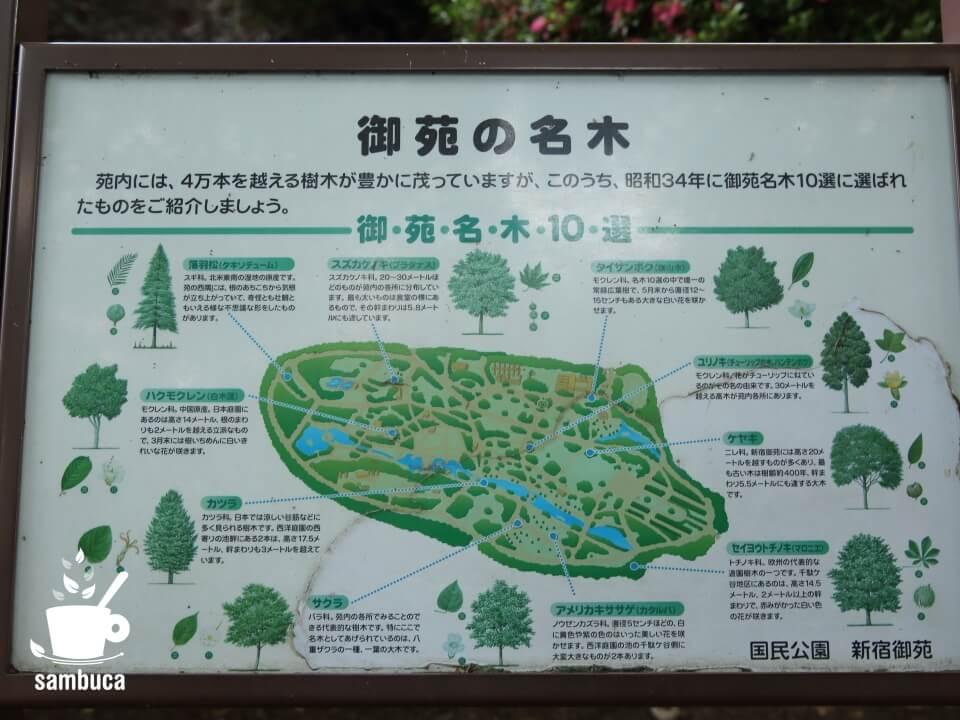 「御苑の名木10選」の案内