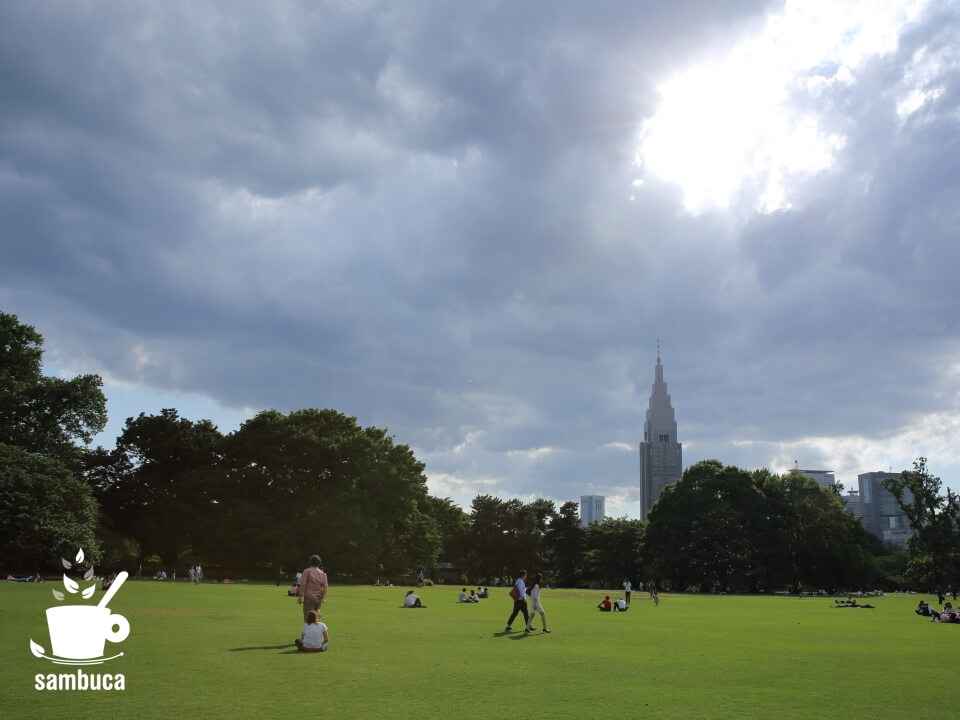 新宿御苑の芝生広場