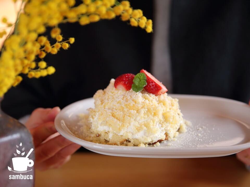 ミモザの花を眺めながら実食です