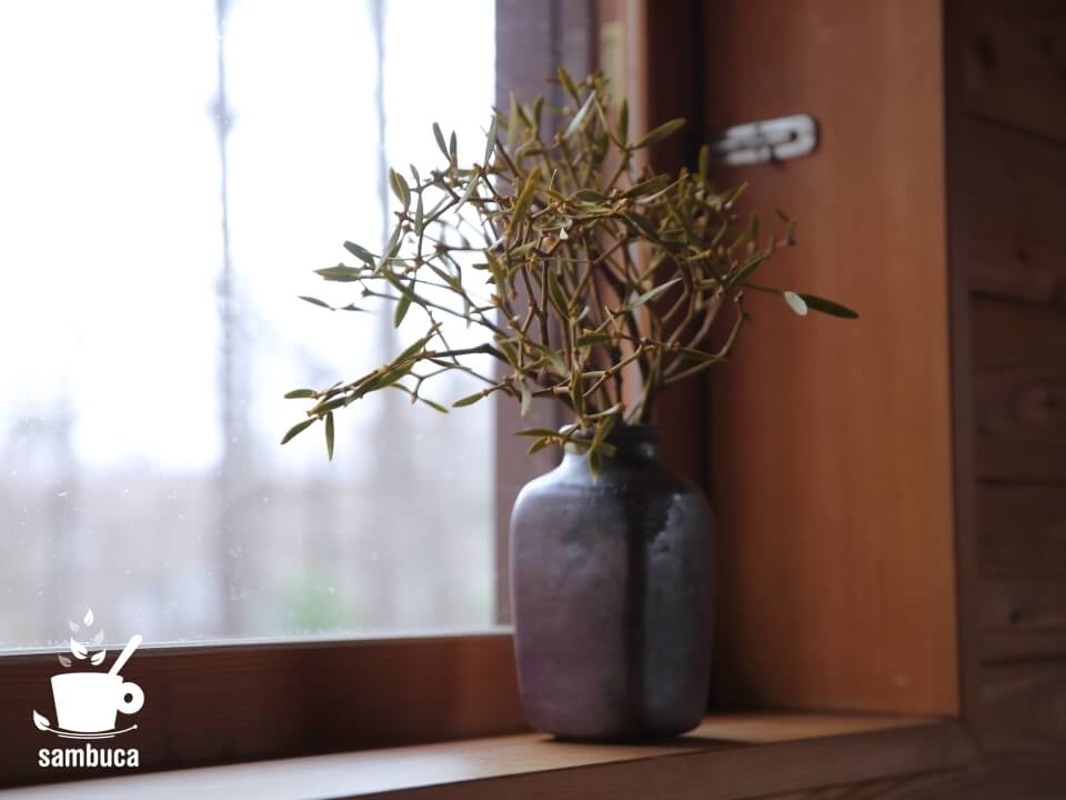 花瓶に生けたヤドリギ